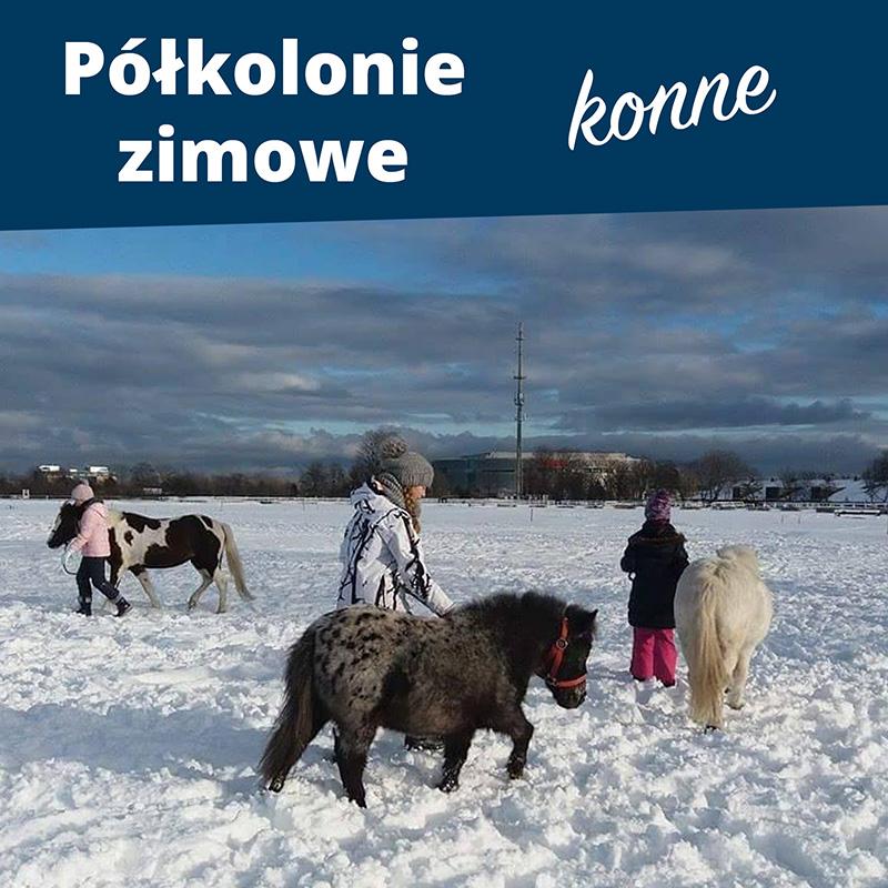 Półkolonie zimowe 2019 w Siodle